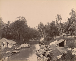 View north from the bridge, Quilon